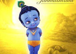 Sri Krishna Janmashtami Diety Seva